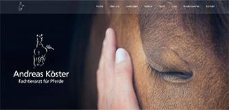 Fachtierarzt für Pferde